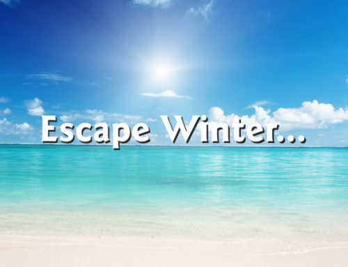 Escape Winter…